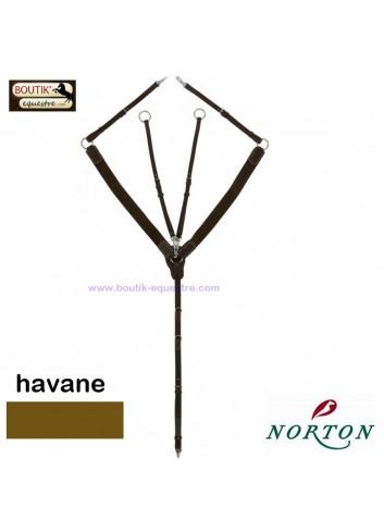 Collier de chasse NORTON Pro - havane
