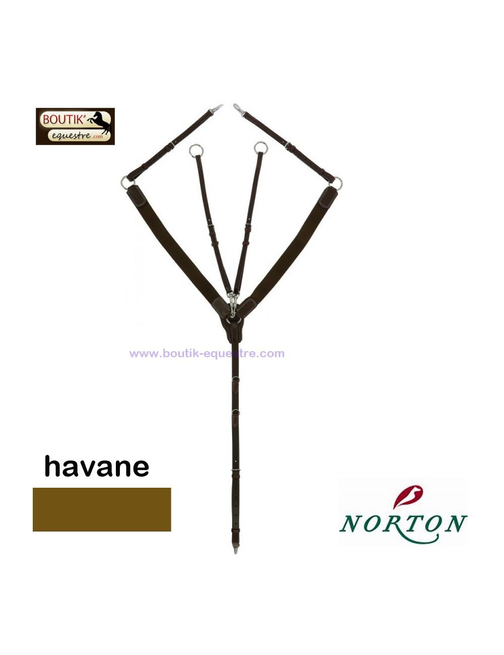 Collier de chasse NORTON Pro