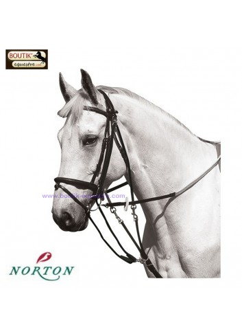 Gogue a poulies NORTON - noir