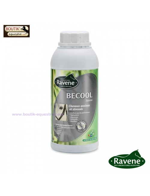Ravene Becool 500 ml