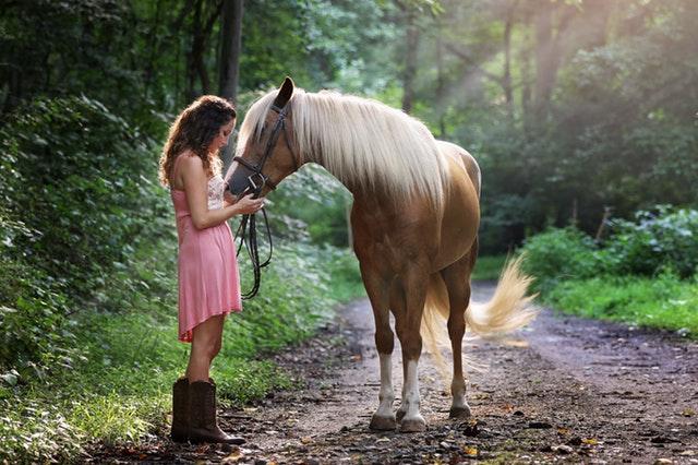 jeune femme avec son cheval